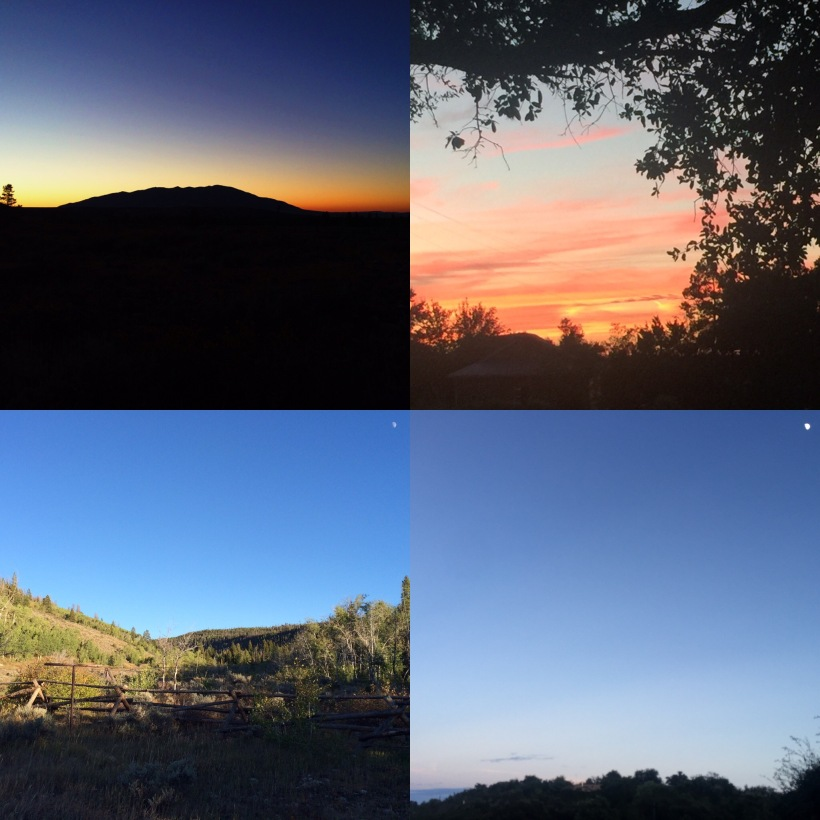 Only the like-minded share photographs of their same pink sky and same tiny moon when miles apart.